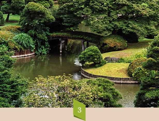 home_garden2_process3